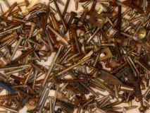 Pila de tornillos de madera Imagen de archivo