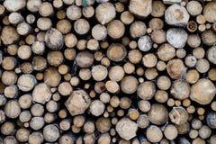 Pila de troncos de madera Foto de archivo libre de regalías