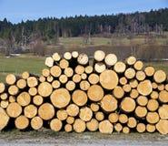 Pila de troncos de madera del fieltro Imagen de archivo