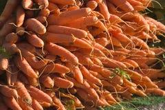 Pila de zanahorias Foto de archivo libre de regalías