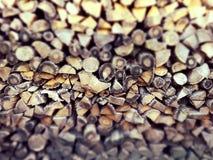 Pila dei ceppi Fotografia Stock
