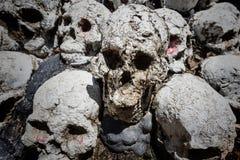 Pila del cranio Fotografia Stock Libera da Diritti