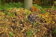 Pila del estiércol vegetal Imagenes de archivo