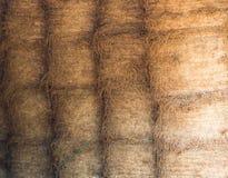 Pila del fieno nel modello Fotografia Stock