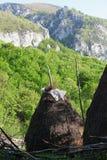 Pila del heno en primavera en las montañas de Cerna Imagen de archivo libre de regalías
