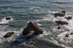 Pila del mare fuori dalla costa di California del Nord Fotografie Stock Libere da Diritti