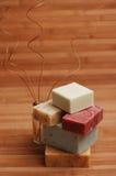 Pila del sapone con le filiali ricce Fotografia Stock Libera da Diritti