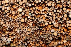 Pila della biomassa Fotografie Stock