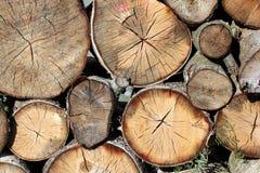 Pila della legna da ardere Fotografie Stock Libere da Diritti