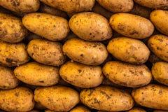Pila della patata Immagini Stock Libere da Diritti