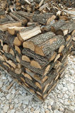 Pila di alberi di recente tagliati Fotografie Stock Libere da Diritti