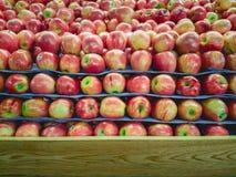 Pila di Apple sul supporto dello scaffale della frutta con legno per lo spazio della copia a Fotografie Stock Libere da Diritti