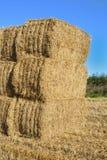 Pila di balle di fieno in un campo, Inghilterra. Immagine Stock Libera da Diritti