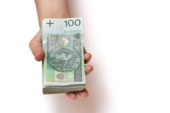 Pila di banconote polacche a disposizione Immagini Stock