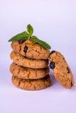 Pila di biscotti con l'uva passa Fotografia Stock Libera da Diritti