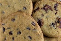 Pila di biscotti di pepita di cioccolato di recente al forno Fotografia Stock Libera da Diritti