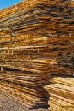 Pila di bordi di legno approssimativi Immagine Stock
