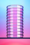 Pila di capsule di Petri Fotografia Stock