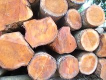 Pila di ceppi 6 di legno Fotografie Stock