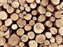 Pila di ceppo di albero per fondo firewood fotografia stock libera da diritti