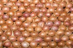 Pila di cipolle rosse Fotografie Stock