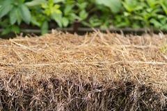 Pila di fieno nella fine del giardino su fotografia stock libera da diritti