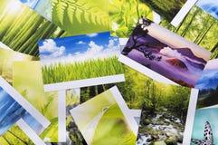 Pila di foto della natura Immagine Stock