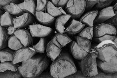 Pila di giorni di inverno di legni Fotografia Stock Libera da Diritti