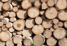 Pila di legna da ardere fotografia stock libera da diritti