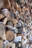 Pila di legna da ardere Immagini Stock