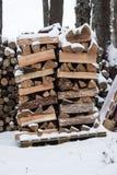 Pila di legna da ardere in neve Immagine Stock Libera da Diritti