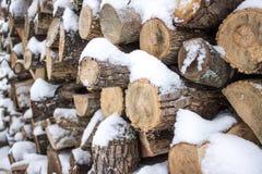 Pila di legna da ardere in neve Fotografie Stock Libere da Diritti