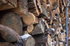 Pila di legna da ardere in neve Immagini Stock