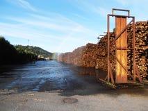 Pila di legname Immagine Stock Libera da Diritti