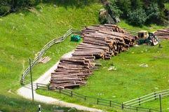 Pila di legname tagliata dal legno Immagini Stock Libere da Diritti