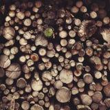 Pila di legno Fotografie Stock Libere da Diritti