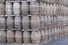 Pila di legno del barilotto della quercia per la distilleria del whiskey fotografie stock