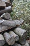 Pila di legno e margherite miniatura Immagine Stock