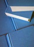 Pila di libri blu Fotografia Stock