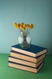 Pila di libri e di fiori Fotografie Stock Libere da Diritti