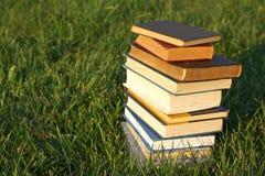Pila di libri nell'erba fotografia stock libera da diritti