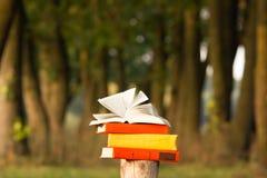 Pila di libro e di libro aperto della libro con copertina rigida sul contesto vago del paesaggio della natura Copi lo spazio, di  Immagini Stock