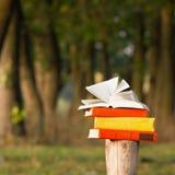 Pila di libro e di libro aperto della libro con copertina rigida sul contesto vago del paesaggio della natura Copi lo spazio, di  Fotografie Stock