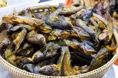 Pila di pesce asciutto fotografia stock libera da diritti