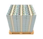 Pila di soldi con il pallet di legno Fotografie Stock