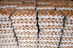 Pila di uova Immagini Stock