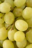 Pila di uva Fotografia Stock