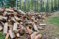 Pila enorme di legna da ardere Fotografia Stock