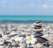 Pila equilibrada de las piedras del zen con la flor del plumeria Fotos de archivo libres de regalías