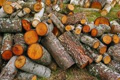 Pila grande de leña Pila grande de leña para la chimenea álamo temblón rojo aserrado de los troncos de árbol, llenado en un montó Foto de archivo